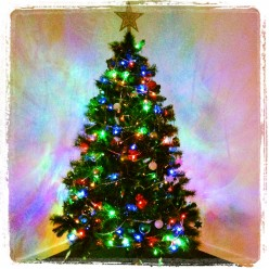 Christmas Is Coming: The Guide to Being Less Stressed and Happier