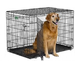 Top 4 best large dog kennel- dog cages for your big buddy