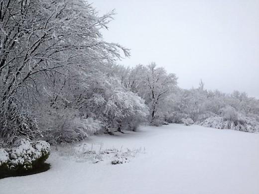 The Christening  Snow