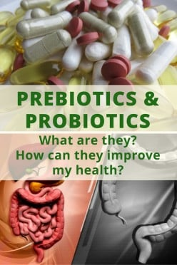 Prebiotics and Probiotics: What Are They and How Do They Affect My Health?