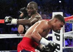 Terence Crawford proved he was for real by knocking out Yuri Gamboa in a lightweight title defense. Crawford has since moved up and won the junior welterweight crown.