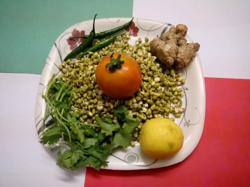 Sprouted Mung Beans with Essential Ingredients to Garnish and Enhancing Taste