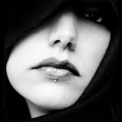 Midnight Muse profile image