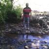 Satyen Velankar profile image