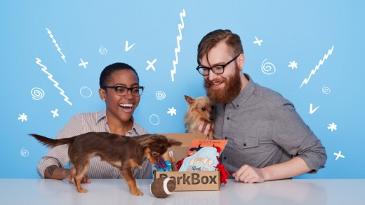 Give one box or send a box a month to your pooch!