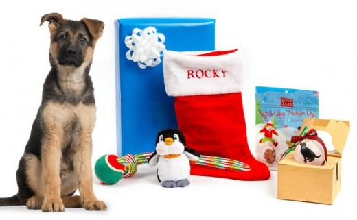 Choose this doggie gift that includes a personalized Christmas stocking