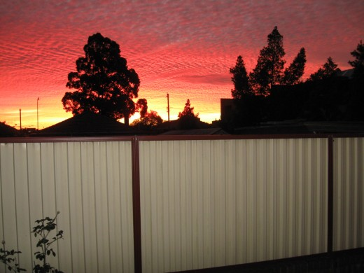 Sunset over my backyard fence.  Do you have the words to describe such beauty?