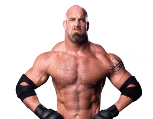 Bill Goldberg famous WWF  wrestler and with goatee  he looks rough and is rough