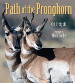 Path of the Pronghorn by Cat Urbigkit - Book images are from amazon.com.