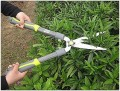 Shrub Trimmers: Choosing The Right Tool For Your Hedge Trimming Needs