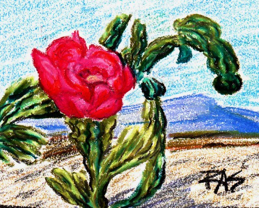 Cholla cactus bloom, oil pastels, Robert A. Sloan