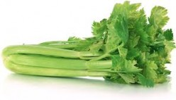 For me personally, Celery is the worst of all the foods in the vegetable group.