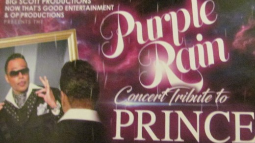 Promotional information on the Purple Rain Concert Tribute to Prince
