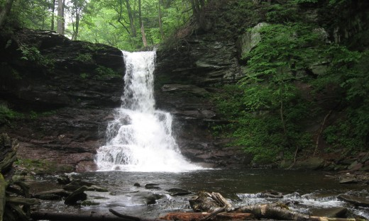 Sheldon Reynolds Falls (36 feet)