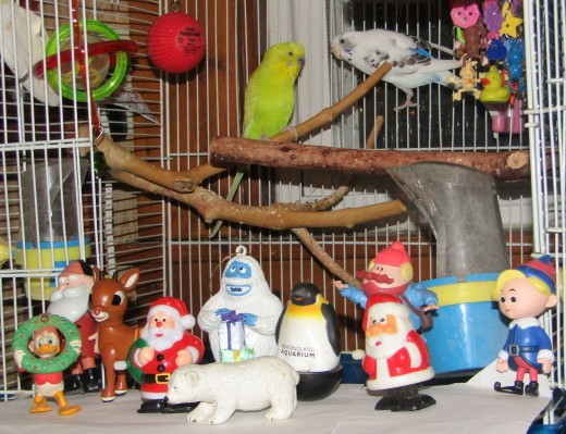 Yellowbird and Pepita join the Christmas crew in wishing everyone a very Merry Christmas! - Photo by George Sommers