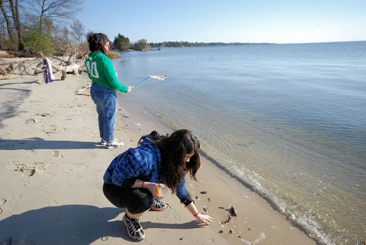 Mindful beachcombing in Virginia State parks.