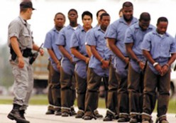 The war on drugs was a plot to lock up black males? Why more Blacks are in prison than whites!