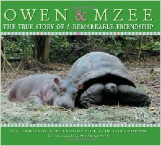 Owen & Mzee -- Narrative Nonfiction Books for Kis