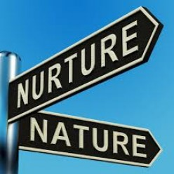 Nurture takes Precedence over Nature?