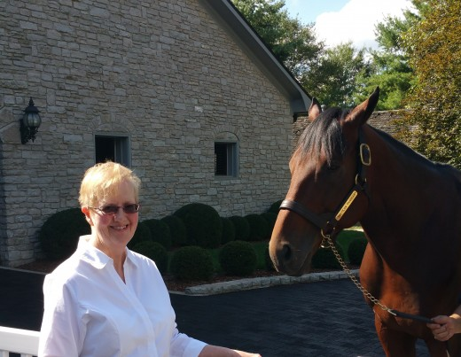 Face to face with Triple Crown winner American Pharoah at Coolmore Stud in Kentucky (2016)