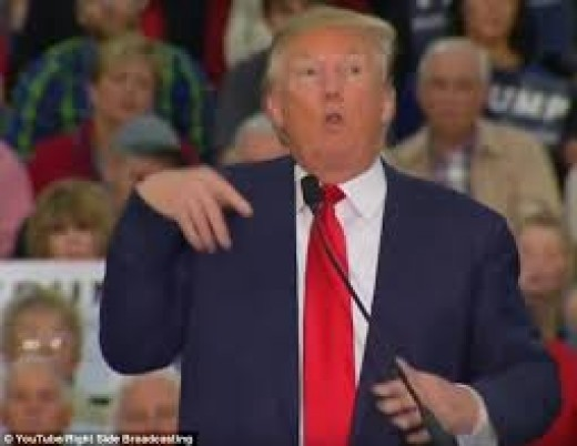 Trump making fun of a disabled reporter who dared speak out against him.