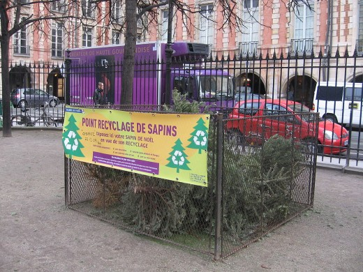 A Christmas Tree recycling bin in Paris, France.