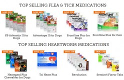 Non-Staining Flea and Tick Treatments