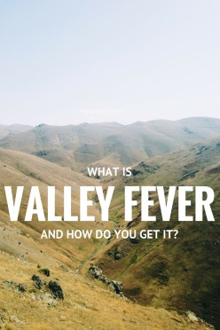 How Do You Get Valley Fever?
