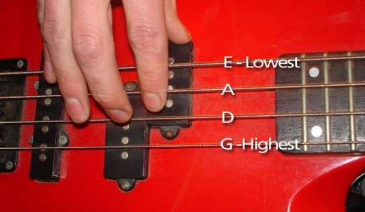 guitar notes diagram. Look at the diagram in the