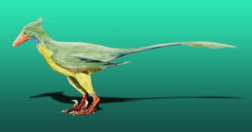 Restauration of a Rahonavis dinosaur