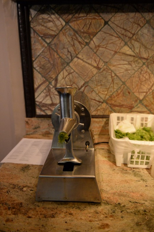 Wheatgrass juicing machine.