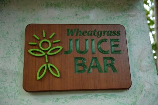 Wheatgrass juice bar.