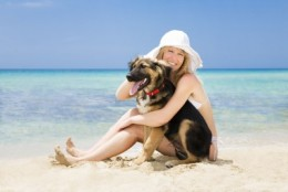 Take your dog on vacation with you!