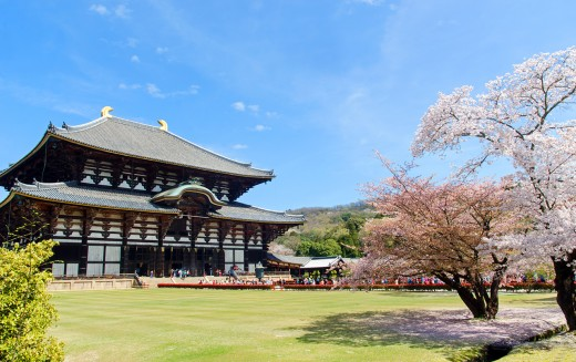 The ancient Japanese capital of Nara is home to several sacred sites. And full of free-roaming, prankish deers.
