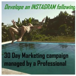The Instagram Marketing Expert