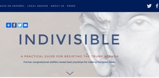 "Here's a screen shot of the cover of the downloadable guide ""Indivisible."""
