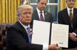 President Donald Trump Hits the Ground Running