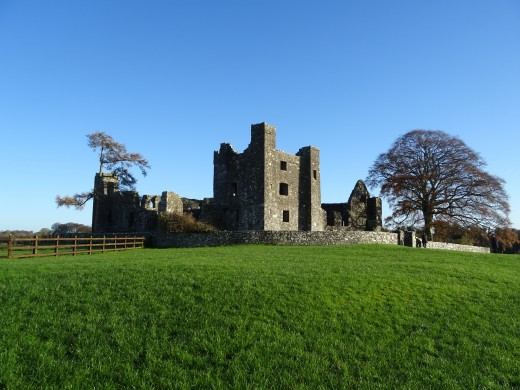 Bective Abbey is really magical place to visit.