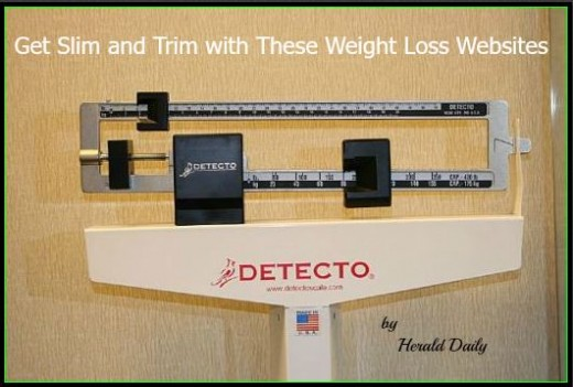 Lose weight from the privacy of your own home with online help and support
