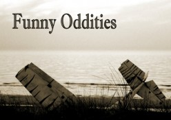 Photo Project Idea - Oddities