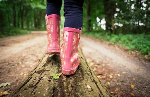 Slip on some boots and head out into the great outdoors to see what treats Mother Nature has on offer.