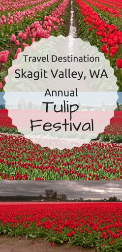 Travel Destination – Skagit Valley, Wa. Annual Tulip Festival