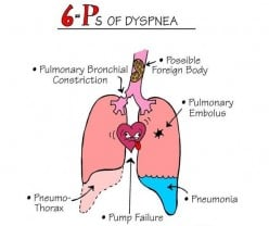 A Qualitative Study on Refractory Dyspnea