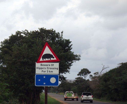 Hippo crossing sign at St Lucia. Photo: Di Robinson
