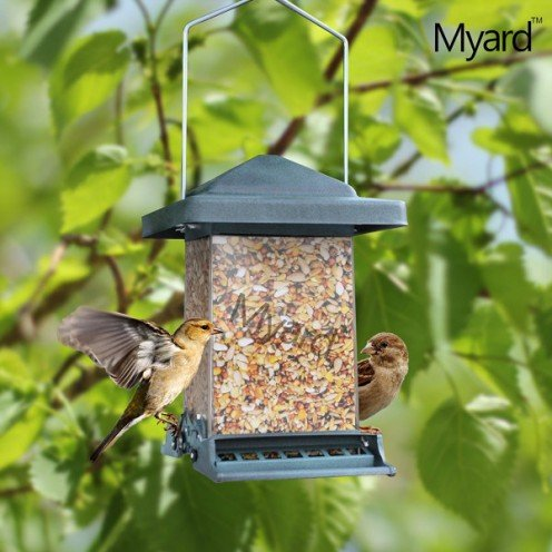 Mayard Squirrel proof Bird feeder