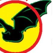 traimtsol profile image