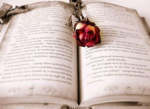 Romance stories, novellas, and novels have been best sellers for centuries. They each are tale of the human experience.
