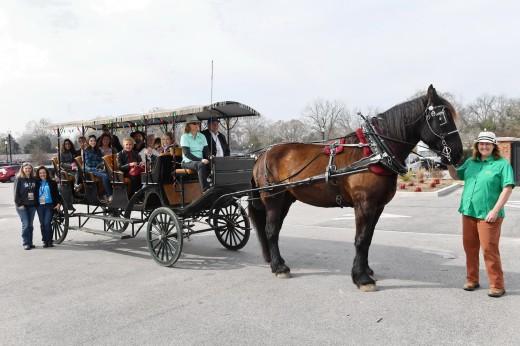 The group enjoys a carriage ride through Historical Camden.