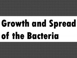 Tips That you Can Keep in Mind in Order to Prevent the Growth and Spread of Bacteria Inside the Cooling Towers