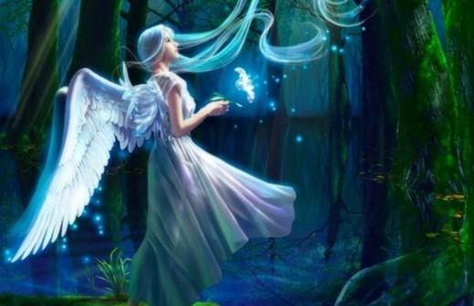 Fairies capture our hearts and imagination.